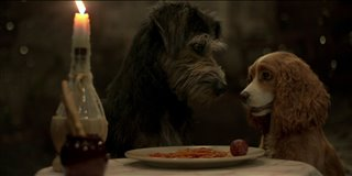 Lady and the Tramp Thumbnail