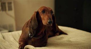 Wiener-Dog Thumbnail