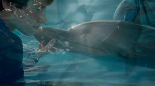 dolphin-tale-2 Video Thumbnail