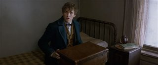 fantastic-beasts-and-where-to-find-them-announcement-trailer Video Thumbnail