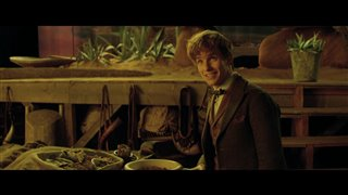 Fantastic Beasts and Where to Find Them Featurette - A New Hero Video Thumbnail