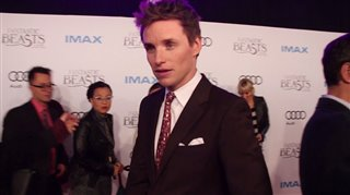 Fantastic Beasts and Where to Find Them Featurette - Red Carpet Premiere Video Thumbnail