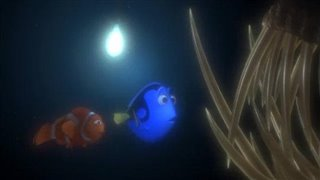 finding-nemo Video Thumbnail