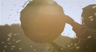 honeyland-trailer Video Thumbnail