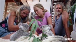 izzys-koala-world-season-1-trailer Video Thumbnail