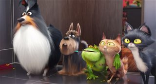 the-secret-life-of-pets-trailer-2 Video Thumbnail
