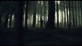 the-woods-official-teaser-trailer Video Thumbnail