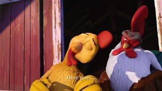 un-gallo-con-muchos-huevos Video Thumbnail