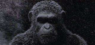 war-for-the-planet-of-the-apes-official-teaser-trailer Video Thumbnail